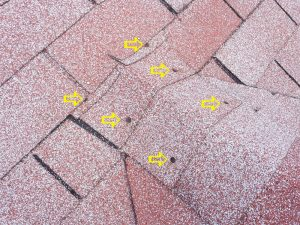 exposed nail heads in asphalt shingles