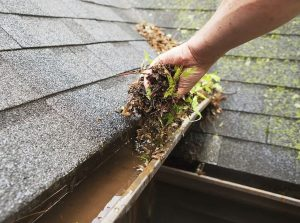 kutters gutters cleaning