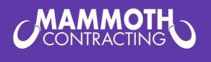 Mammoth Contracting LLC - Texas